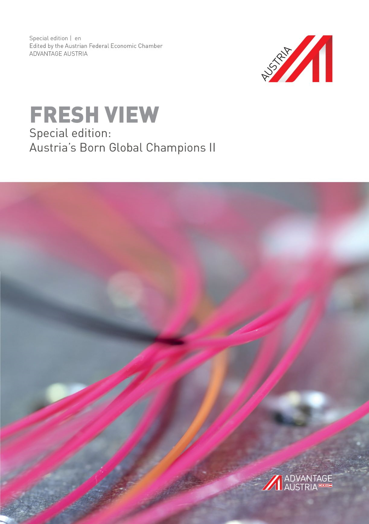 Austria's Born Global Champions II | en
